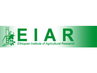 Ethiopian Institute Of Agricultural Research